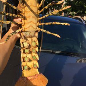 猛犸象牙雕刻彩绘大龙虾摆件