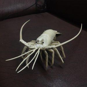 猛犸象牙雕刻大龙虾摆件